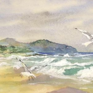 Apollo Bay windy day with Cathy Donovan Watercolour Artist