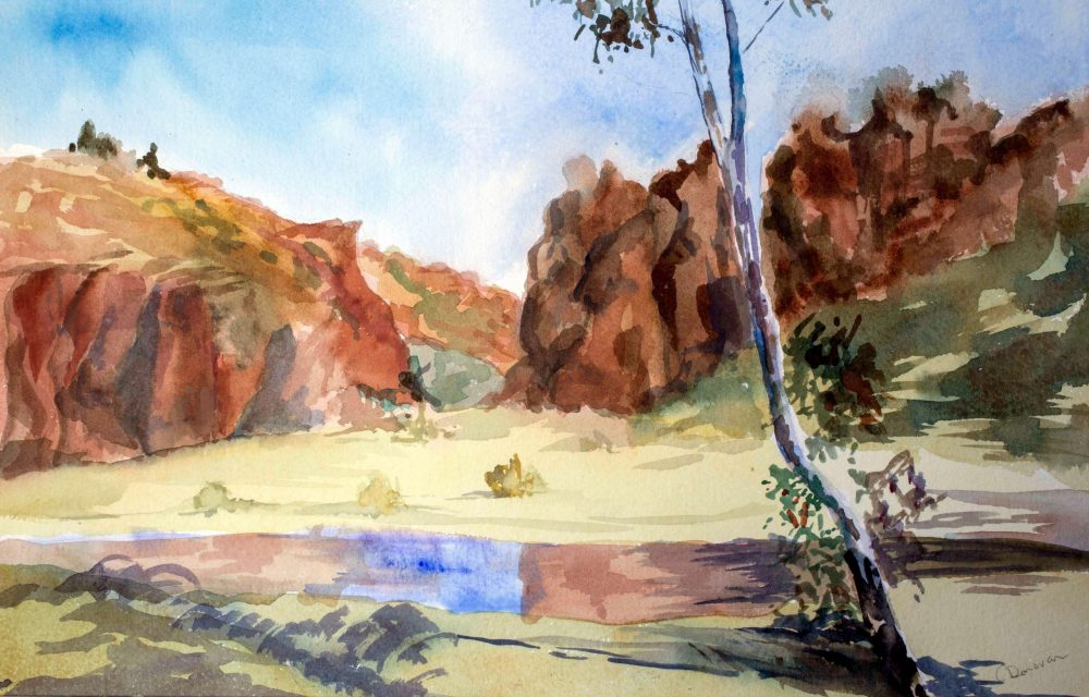 Central Australia plein air by Cathy Donovan Artist